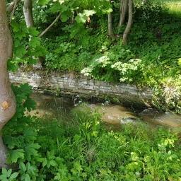 Der Wasser(fach)mann vom Mühlgraben