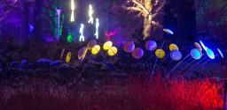 Fantastische Lichterwelt im egapark