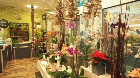 Blumen in allen Varianten
