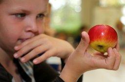 Apfelprojekt egapark: Süß oder sauer? Das ist hier die Frage