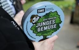 Stadtwerke Erfurt fördern junges Gemüse