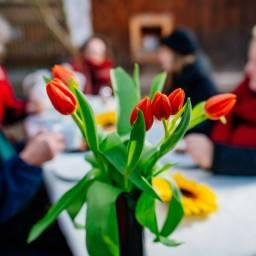 BürgerStiftung Erfurt: Alle an einen Tisch