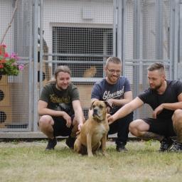Ein Herz für Tiere